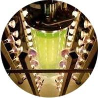 photo bioreactor